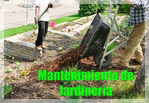 Mantenimiento de Jardineria1